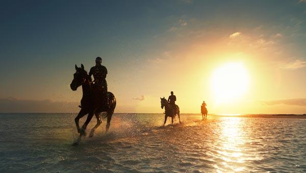 Horseriding in Mauritius